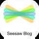 seesaw blog